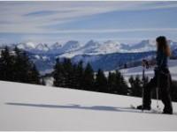 NewstartPlus-Kur 1 (13.01.2019 für 12 Tage), Sonnmatt, Schweiz